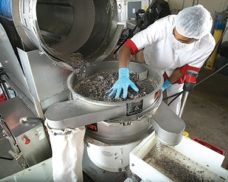 Vibratory Sifting Improves Baked Goods Throughput